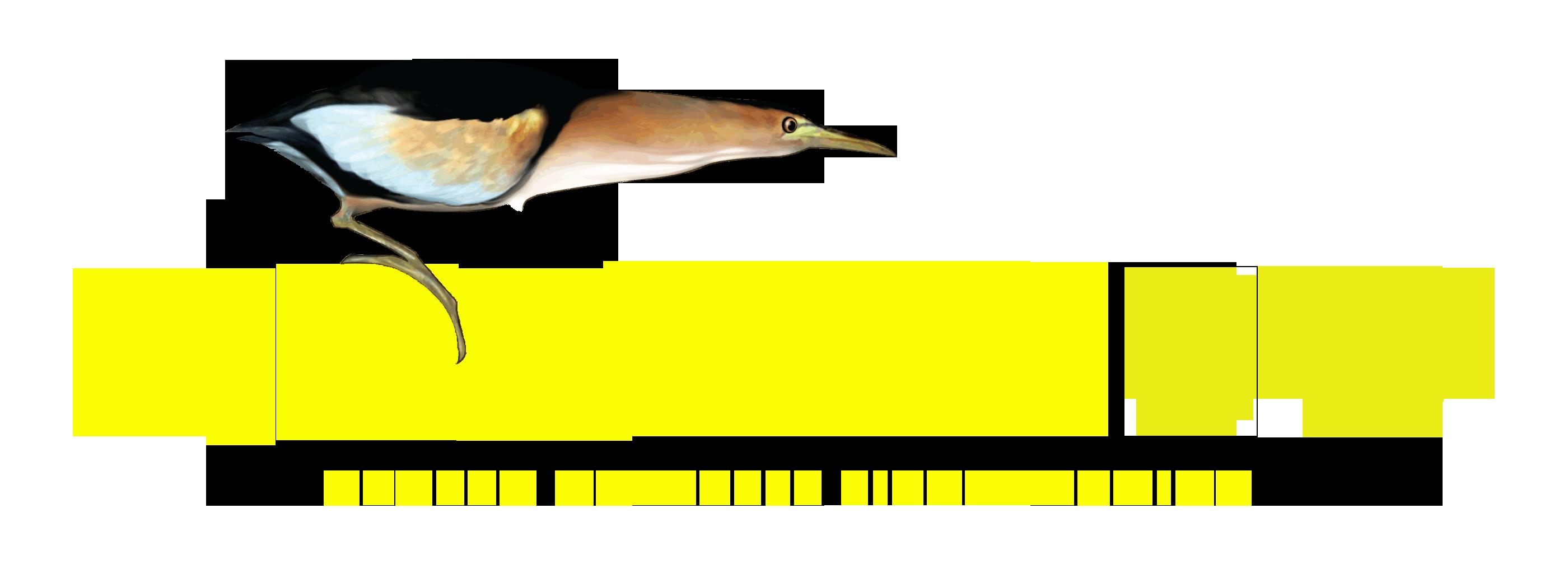 Novara BirdWatching